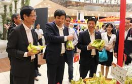 Chuối Việt Nam chính thức vào siêu thị Aeon