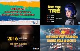 Đặc sắc chương trình Thể thao Tết Dương lịch 2017 trên sóng VTV