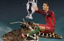Chú bướm đêm đậu trên mặt Ronaldo gây náo loạn mạng xã hội