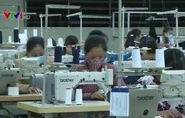 Cổ phần hóa tạo động lực phát triển ngành dệt may