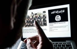 4 công ty công nghệ lớn hợp tác ngăn chặn tuyên truyền khủng bố