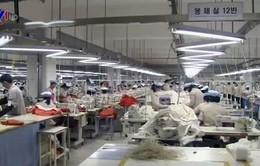 Doanh nghiệp phản ứng về việc đóng cửa KCN Kaesong