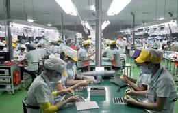 TP.HCM chuẩn bị triển khai giai đoạn 2 đề án phát triển công nghiệp hỗ trợ