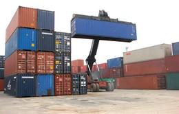 Đà Nẵng phát hiện vụ đánh tráo hàng xuất khẩu