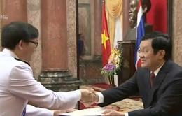 Chủ tịch nước nhận quốc thư từ các Đại sứ
