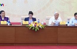 Hội nghị Đại biểu Quốc hội chuyên trách thảo luận 2 dự án luật