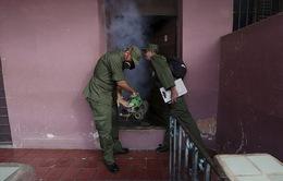 Cuba đẩy mạnh phòng ngừa dịch bệnh do virus Zika