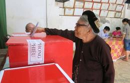 Cử tri Nam Định, Ninh Bình, Thái Bình, Thanh Hóa nô nức tham gia bầu cử