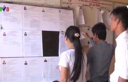 Lý Sơn tích cực tuyên truyền bầu cử đến ngư dân