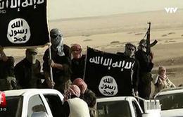 Kẻ khủng bố tại Nice đã cực đoan hóa trong thời gian rất ngắn