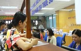 Cục Thuế TP.HCM làm việc cả ngày thứ Bảy
