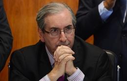 Xét xử Chủ tịch Hạ viện Brazil tội tham nhũng