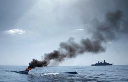 Cướp biển Somalia thích tấn công các tàu nhỏ