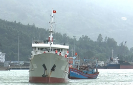 Vùng 3 Hải quân cứu nạn thành công 2 tàu cá gặp nạn