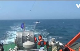Cứu hộ tàu cá Quảng Ngãi gặp nạn
