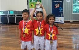 Đà Nẵng giành giải trong cuộc thi Robothon quốc tế 2016