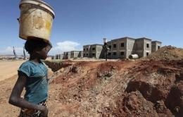 WHO cảnh báo dịch sốt vàng da khiến 158 người chết ở Angola