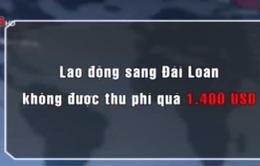 Lao động sang Đài Loan không được thu phí quá 1.400 USD