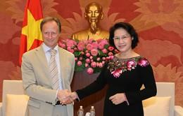 Chủ tịch Quốc hội tiếp các Đại sứ