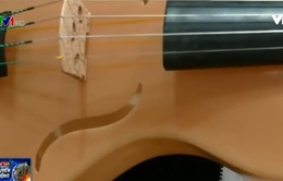 Đàn violin làm từ… tơ nhện