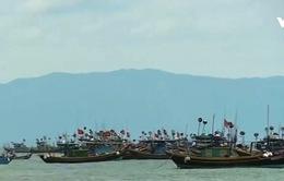 Ngư dân Quảng Bình đề nghị khám sức khỏe sau sự cố cá chết