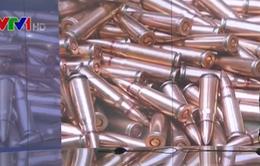 Hà Lan phát hiện 45 kg đạn dược liên quan âm mưu khủng bố Pháp
