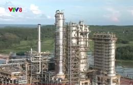 Lọc hóa dầu Bình Sơn đạt đạt chứng chỉ tín nhiệm xanh 2016