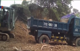 """TP.HCM: Đất dự án thành """"miếng mồi ngon"""" bị đào trộm"""