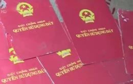 Hà Nội: Hàng chục hộ dân tại Ứng Hòa cho thuê đất liệu có thể đòi lại?
