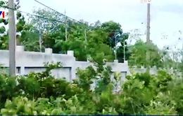 Nghi vấn bán đất Hợp tác xã tại Bà Rịa - Vũng Tàu