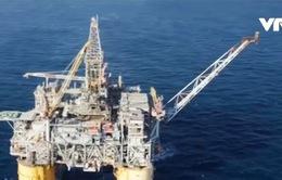 Nguồn cung dầu dự kiến giảm trong năm 2017