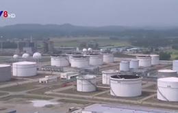Kiến nghị điều chỉnh thuế nhập khẩu dầu diesel và xăng máy bay