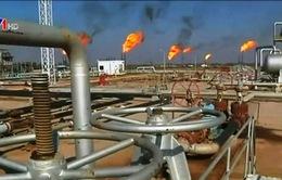 """Không đạt được thỏa thuận """"giới hạn"""" sản lượng dầu mỏ"""
