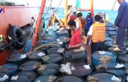 Kiên Giang: Bắt giữ tàu vận chuyển 50.000 lít dầu trái phép