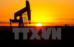 Thế giới dư thừa nguồn cung dầu