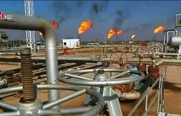 Nga - Saudi Arabia nhất trí duy trì sản lượng khai thác dầu