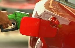 Nhiều quốc gia dầu mỏ tìm cách chuyển đổi nền kinh tế