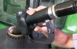 Bulgarya điều tra các công ty dầu mỏ thông đồng ấn định giá