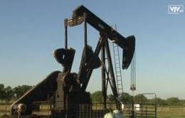 Giá dầu thấp tác động xấu tới ngành năng lượng Mỹ
