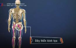 Điều trị bệnh đau dây thần kinh tọa bằng Đông y