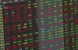 Cổ phiếu dầu khí tăng nhưng chưa phải thời điểm đầu tư