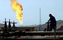 Iran: Nguồn thu từ dầu mỏ dự kiến sẽ tăng