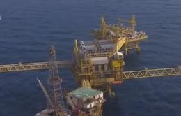 Giá dầu thô Mỹ lập mức thấp kỉ lục trong 12 năm