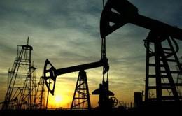 Sản lượng dầu thô tháng 9 của Nga lập đỉnh mới