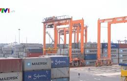 Bồ Đào Nha gia tăng đầu tư vào Việt Nam