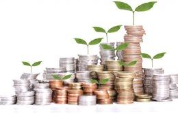 """Hoàng Long sập, lại """"mọc"""" thêm công ty đầu tư tài chính trả lãi tuần"""