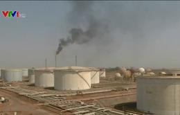Giá dầu rớt mạnh khi đàm phán Doha thất bại