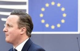 Anh đối mặt với bất ổn nếu rời EU
