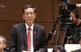 ĐBQH đề nghị Chính phủ có giải pháp quyết liệt, nghiêm minh sau hệ lụy của Formosa