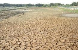 Biến đổi khí hậu tác động tới hàng triệu người dân ĐBSCL